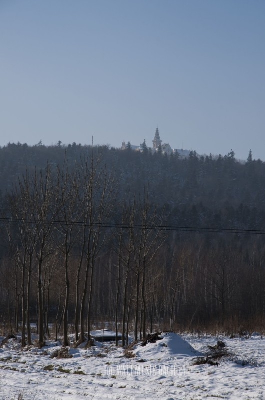 Łysa Góra