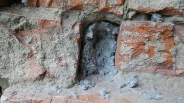 Celuloza w murze z cegły